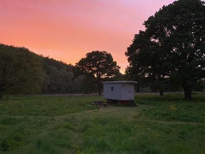 The Shepherds Hut at Tipi Adventure