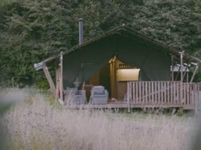 Safari Tents at Nature's Nest