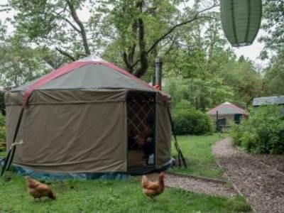 Wilderness Yurt