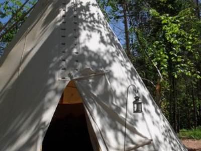 Buzzard Tipi at Woodland Tipi and Yurts