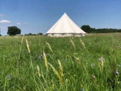 Wildflower Glamping Bell Tents