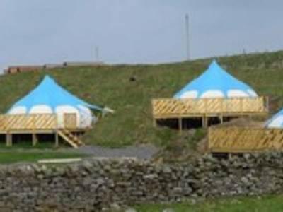 Herding Hill Lotus Belle Tent