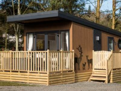 Pet Free Hive Cabin at Waterfoot Caravan Park