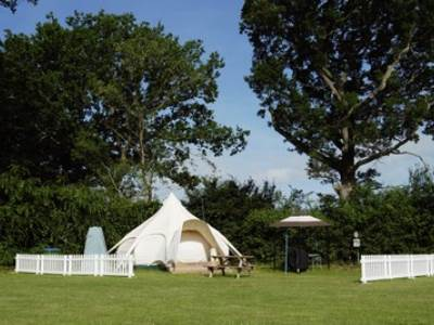 Lotus Belle Tent at Broadhembury 'Adults Only'