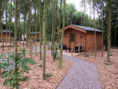Glamping Lodges at Riddings Wood
