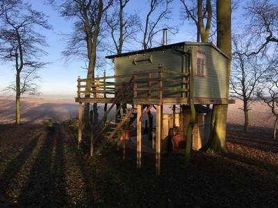 The Treehouse at Dale farm