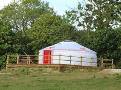 Pet Friendly Yurt at Real Glamping